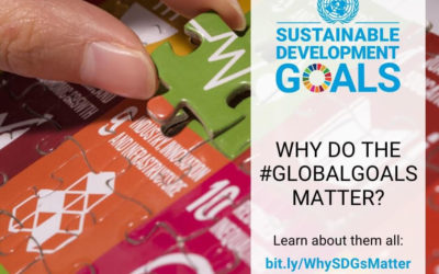 Why the Global Goals Matter